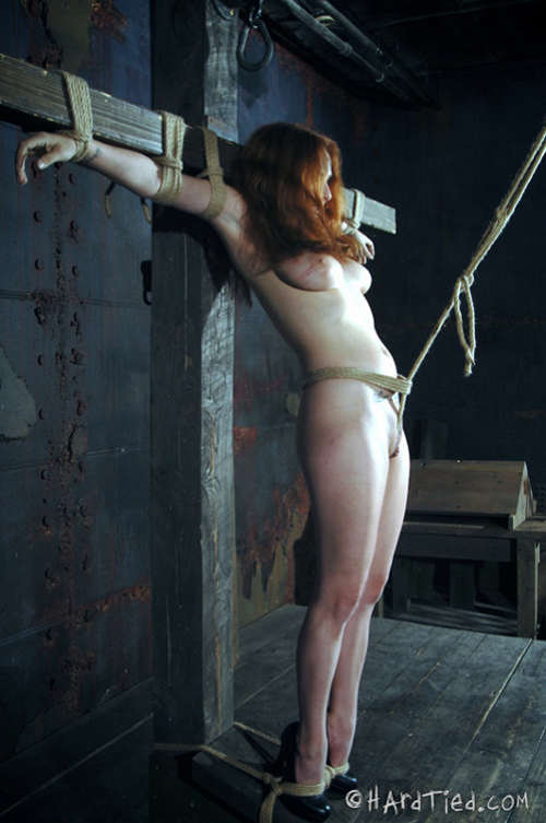 Interesting bdsm bondage cross